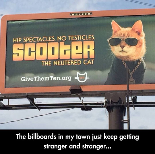 Vet Billboards