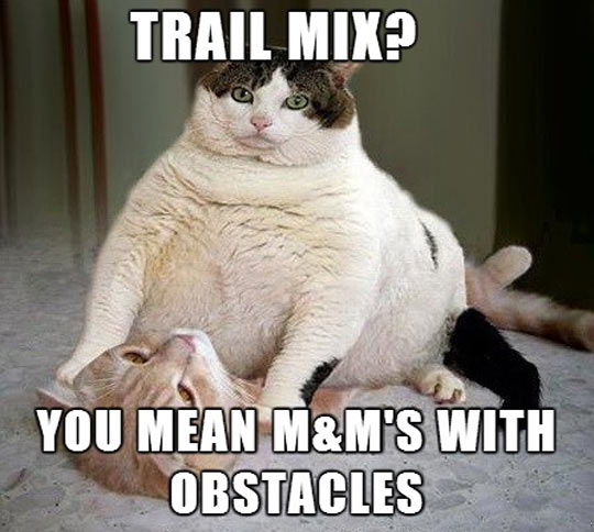 What Do You Mean Trail Mix?