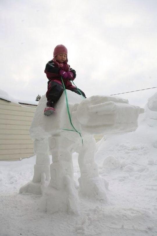 cool-ice-snow-Star-Wars-kid