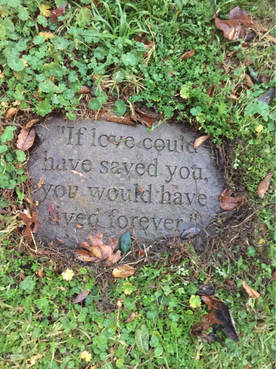 cool-love-quote-stone