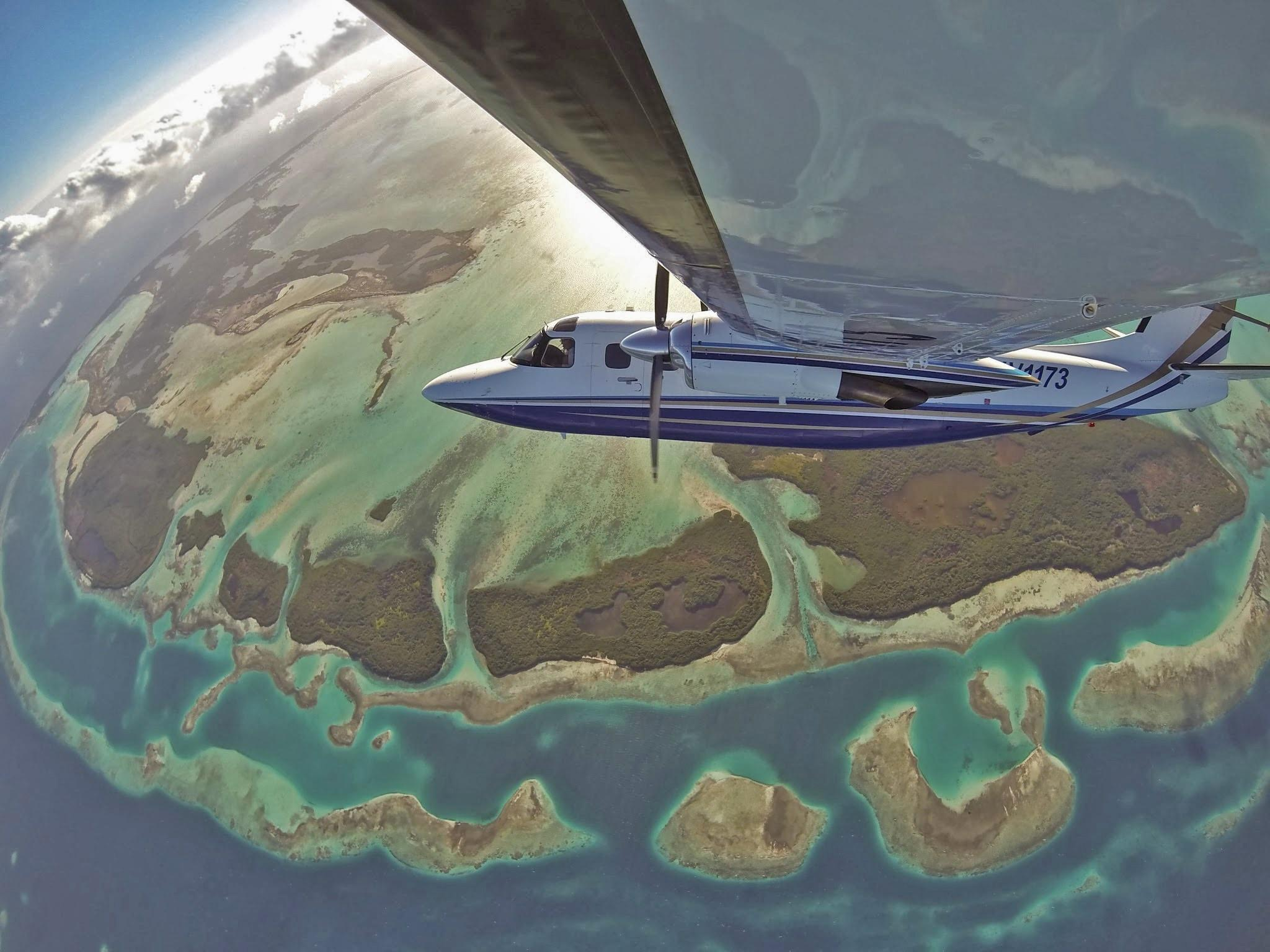 If planes took selfies