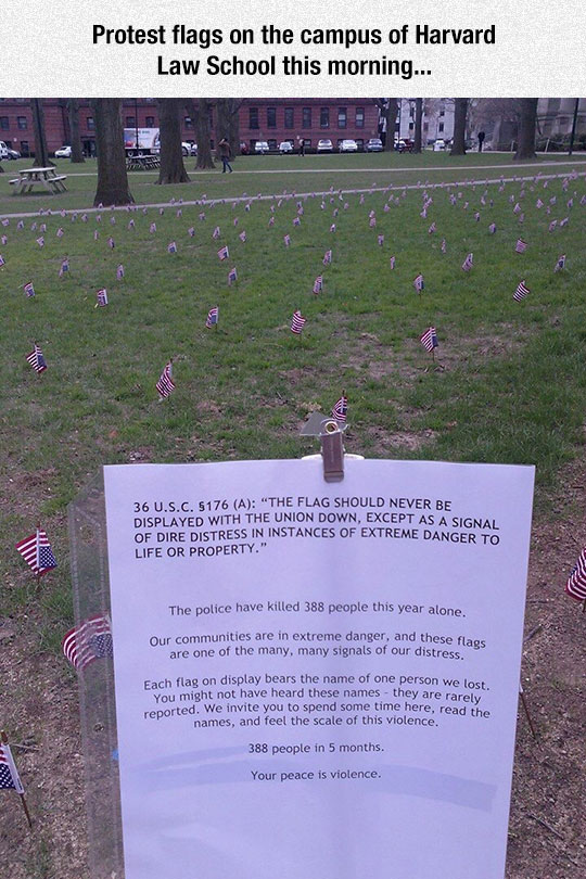 cool-protest-flag-campus-Harvard