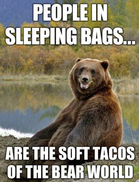 funny-beard-woods-tacos-sleeping-bag