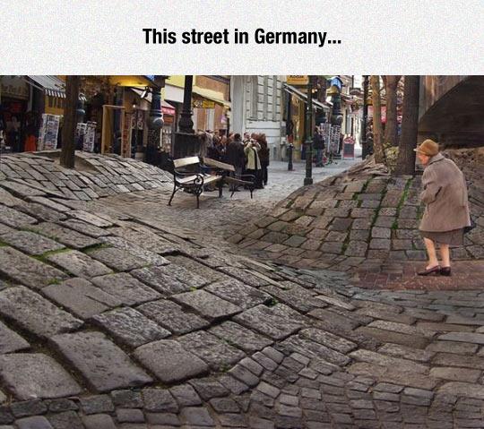 funny-streets-Germany-tree-wave