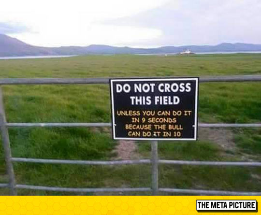 funny-sign-cross-field-seconds-bull