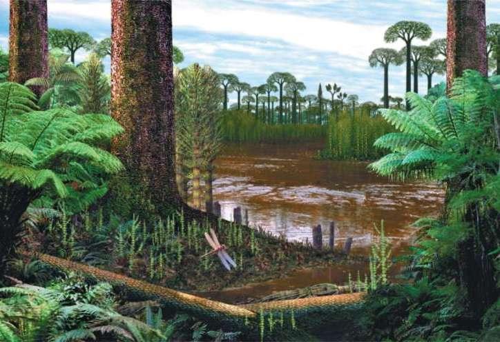 Image result for flourished forests