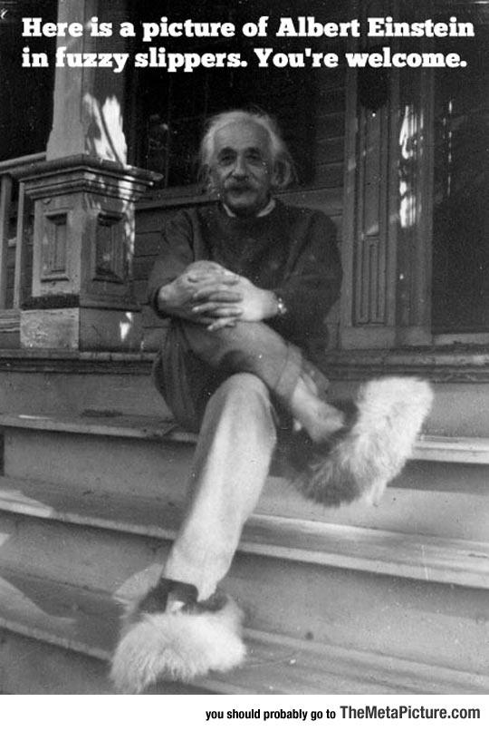 cool-Albert-Einstein-fuzzy-slippers