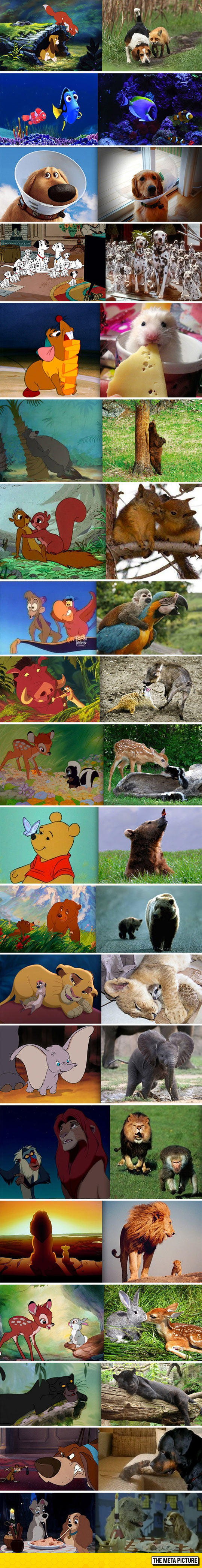 cool-Disney-movies-real-life