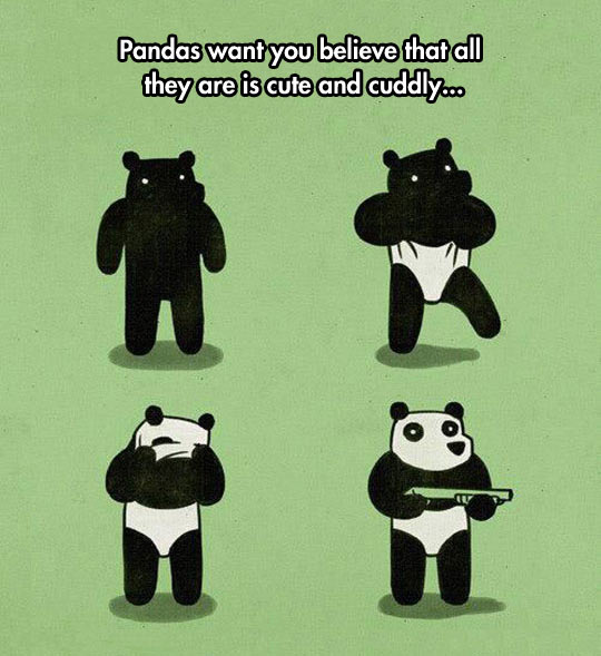 Pandas Are Not What They Seem