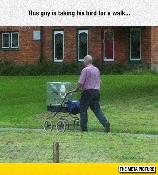 funny-man-walking-bird-street