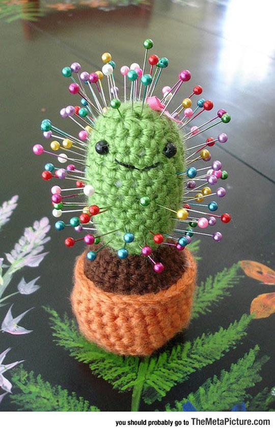 cool-cactus-pin-cushion-smiling
