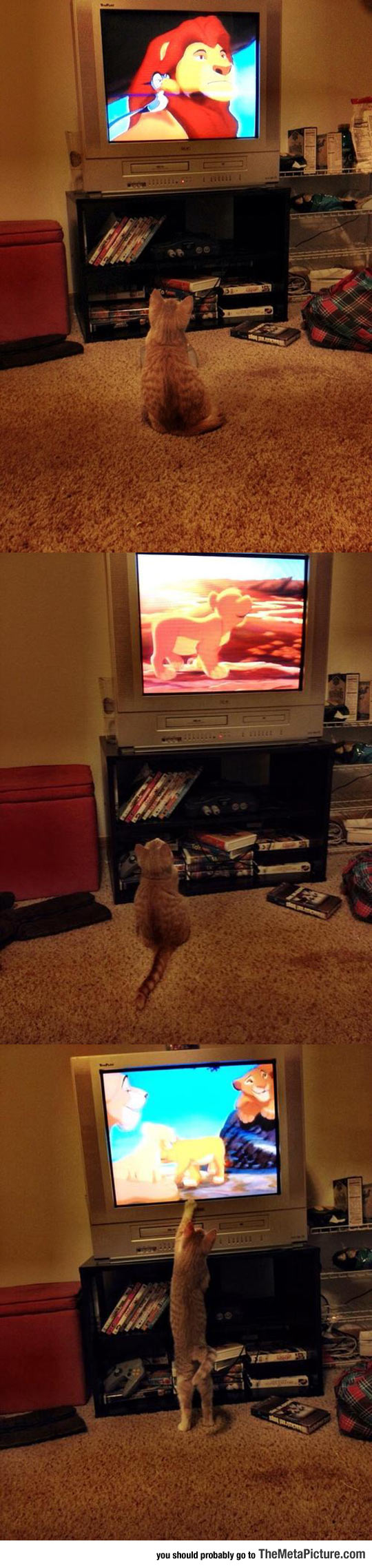 Watching The Lion King