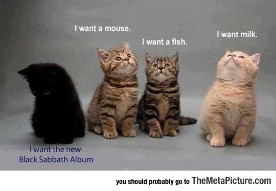 cool-cats-Heavy-Metal
