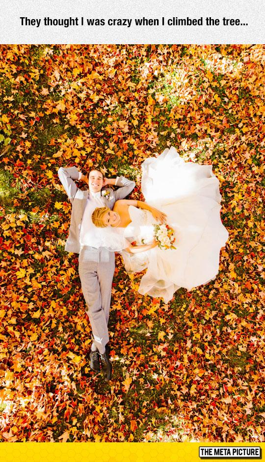 cool-wedding-photo-ideas-tree
