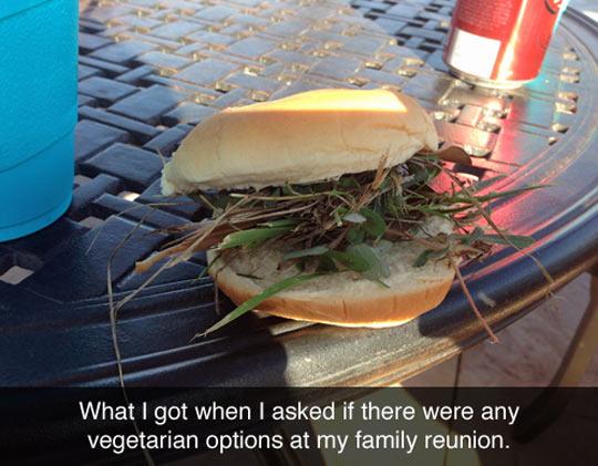 cool-family-reunion-vegetarian-burger