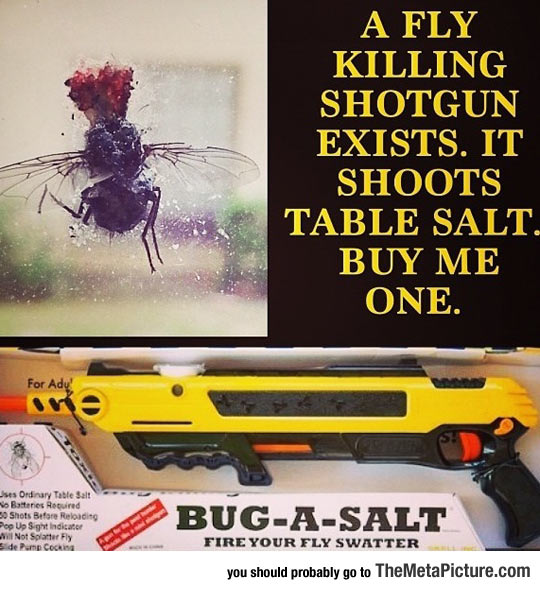 cool-fly-salt-weapon