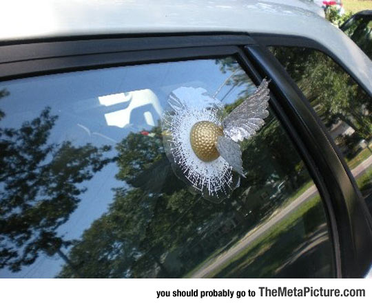 funny-Harry-Potter-golden-Snitch