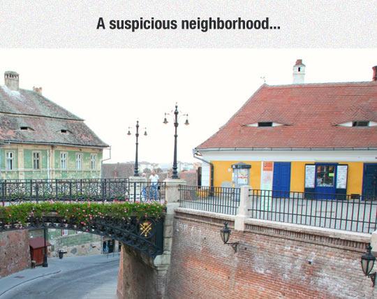 funny-houses-eyes-suspicious-neighbor