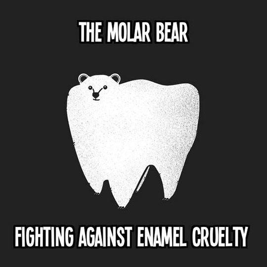 funny-molar-polar-bear-dentist
