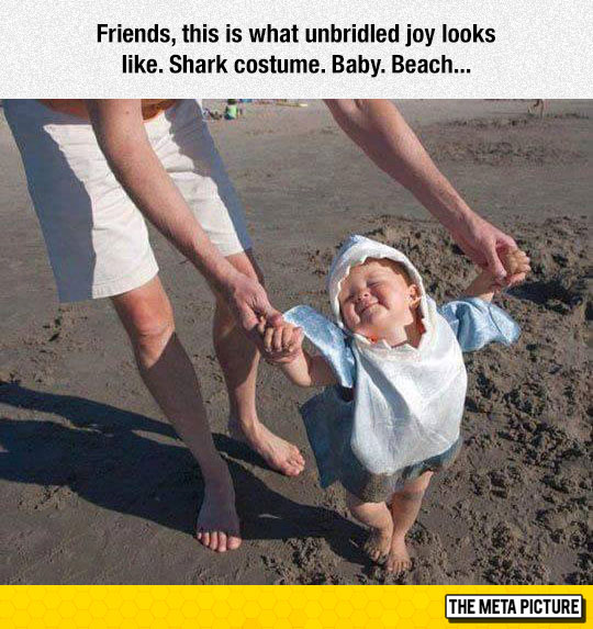 funny-baby-shark-costume-parents-beach