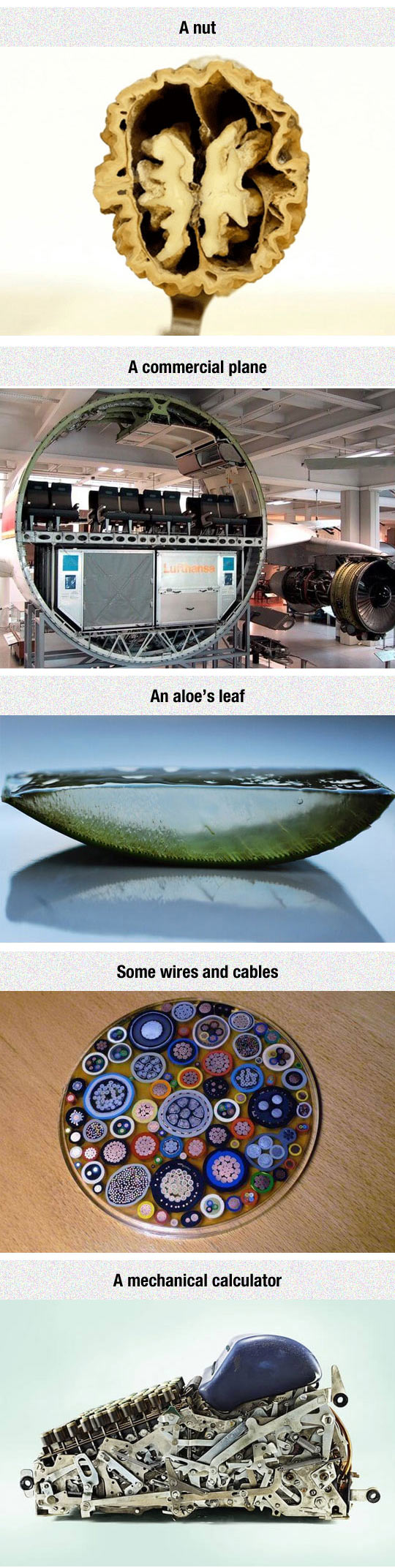 cool-objects-cut-cable-plane