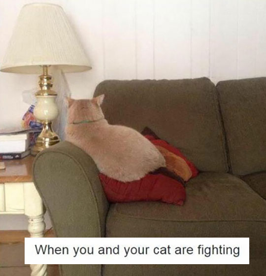 In A Fight