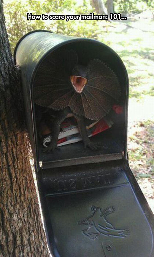 How To Never Get Mail Again