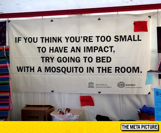 cool-sign-mosquito-inspirational
