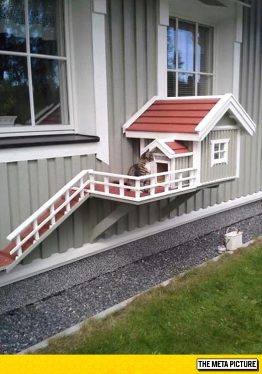 cool-house-for-cats-tiny-wood