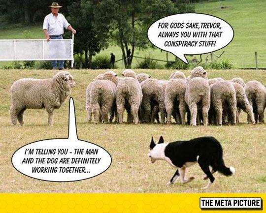 Conspiracy Stuff