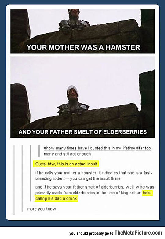 cool-Monty-Python-insult-mom-father