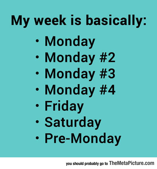 cool-week-basically-Monday