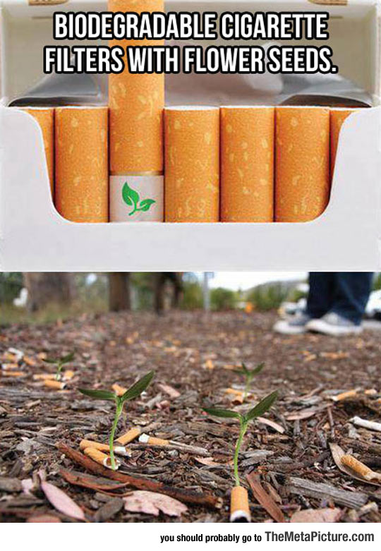 Cigarette Filters With A Surprise