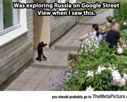 You See In Soviet Russia, Pets Walks You