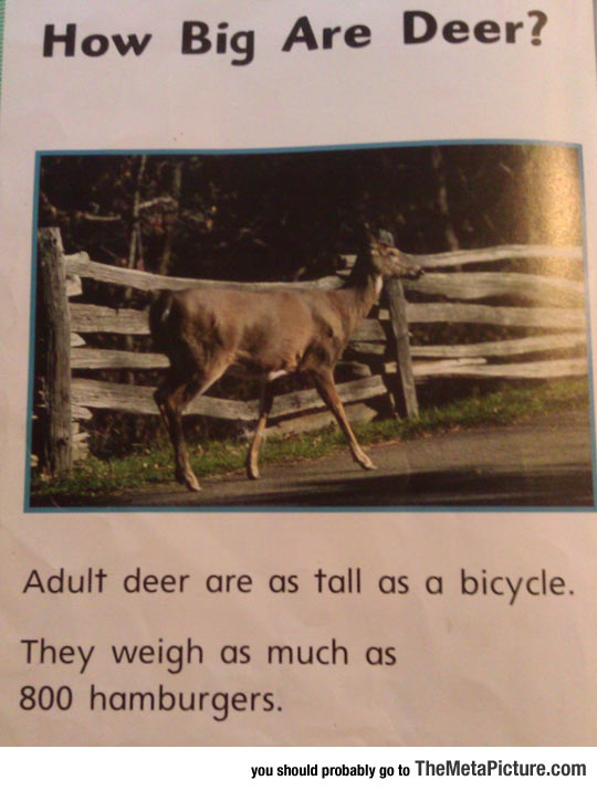 Found This In A Book, This Is How We Weigh Things In America