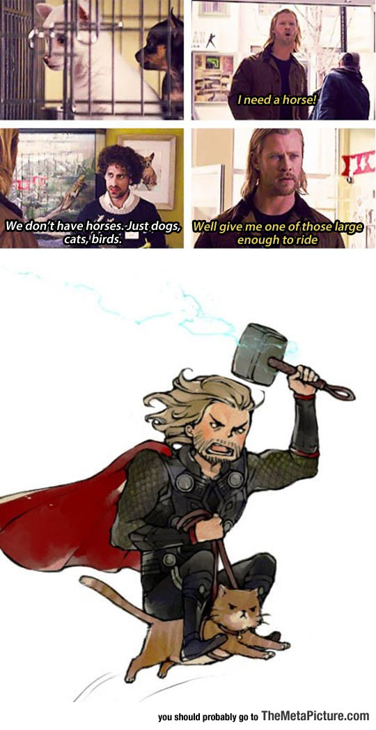 cool-Thor-pet-shop-ride