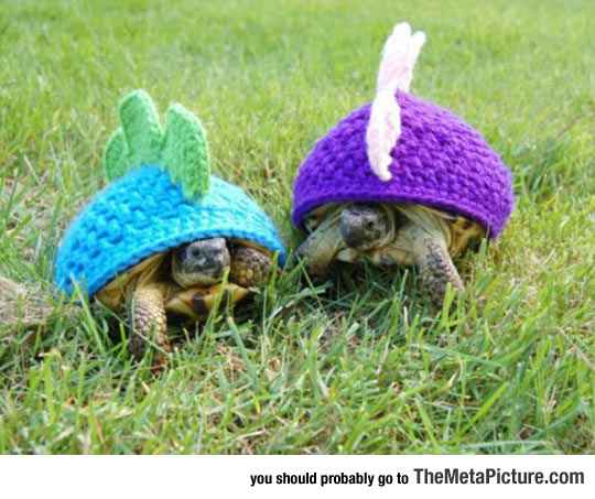 cool-turtles-dragon-beanie