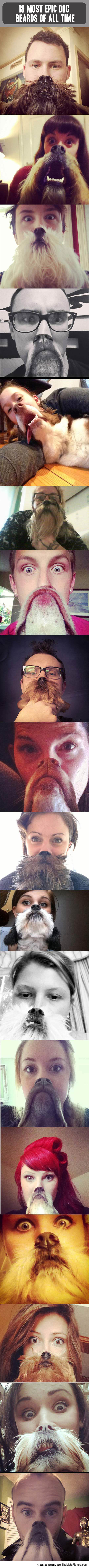 funny-dog-beards-owners