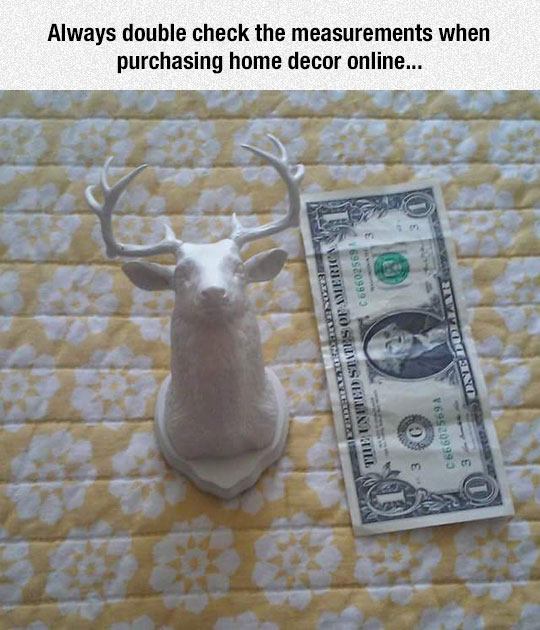 funny-little-deer-head-bill