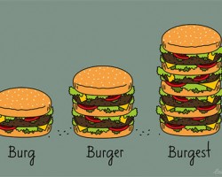 Burger Explained