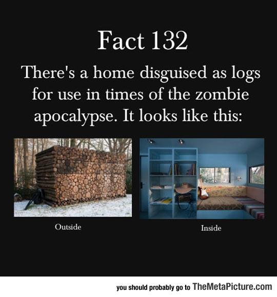 idea-zombie-apocalypse-house