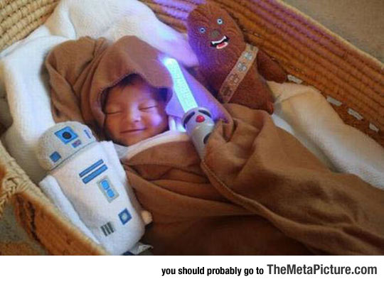 The Force Is Strong With This Little Guy
