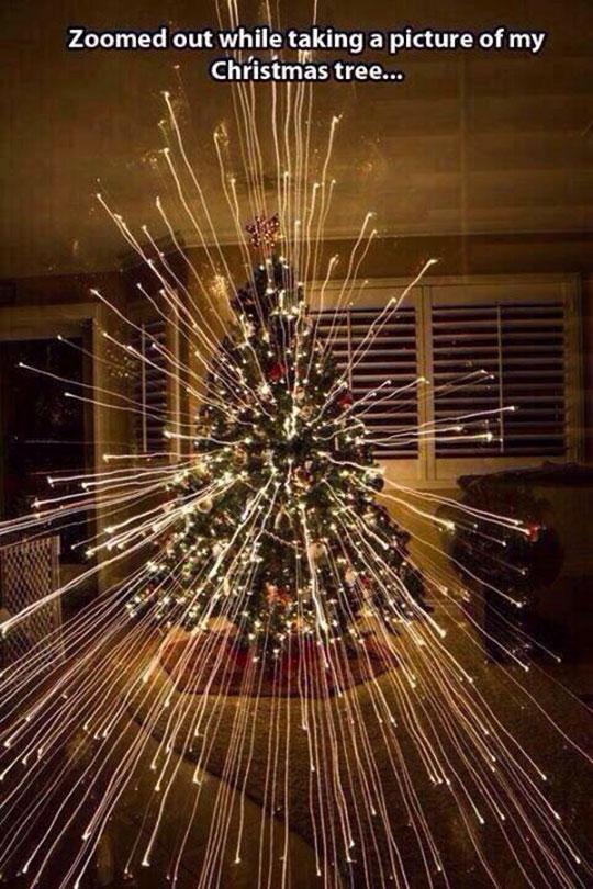 Majestic Christmas Lights